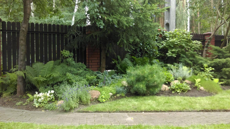 rabaty z roślinami