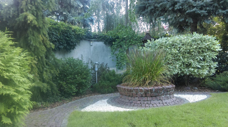 mur i rośliny pnace