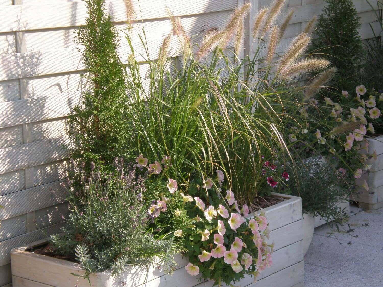 donica z roślinami